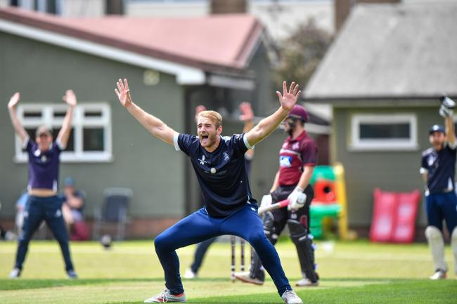In the thick of the action - Billericay's Paul Walter appeals for a wicket                           Picture: JON WAGSTAFF
