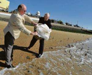 Tradition – mayor Brian Smith, assisted by Major Francis Frost, casts  the catch back into the estuary
