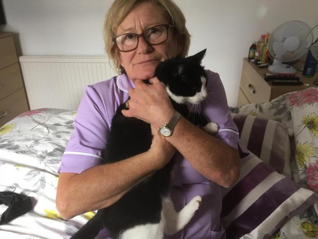 Safe - Mrs Vivian with the cat that is now doing well and staying at the animal lovers' home sometimes at night