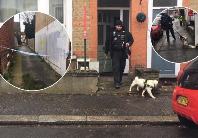 A sniffer dog investigating the scene of the crime