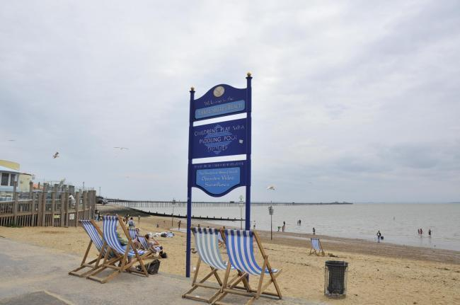 750 people back call for dogs to be allowed on Southend beaches all year