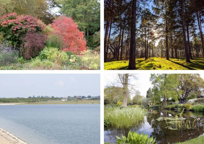 These are the top ten Essex parks and gardens according to Trip Advisor reviews