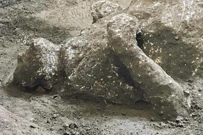 The casts of one of two bodies in what was an elegant villa on the outskirts of the ancient Roman city of Pompeii