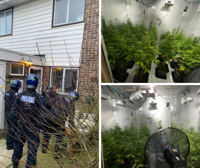 The police raid in Benfleet yesterday