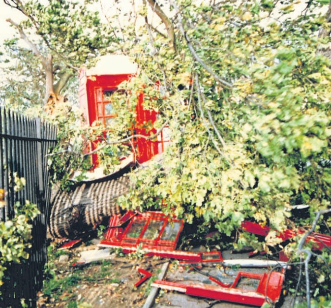 Devastation calling - Simon Bishop saw a phone box in London Road which had been decimated by a tree