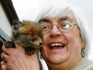 Veronica Mepham with a baby fox