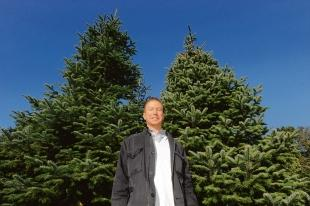 Tall order – Christmas Tree Farm owner Martin Hurley hopes one of his specimens will grace the outside of No 10