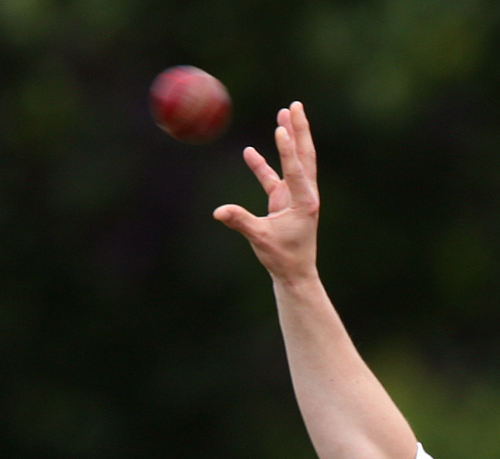 Billericay claimed another unlikely win thanks to a fantastic bowling display after their batting order collapsed for a measly 104.