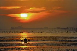 Thorpe Bay seafront by Phil Hubbard