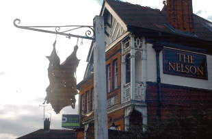 Artwork – the goatskin left hanging outside the defunct Nelson pub