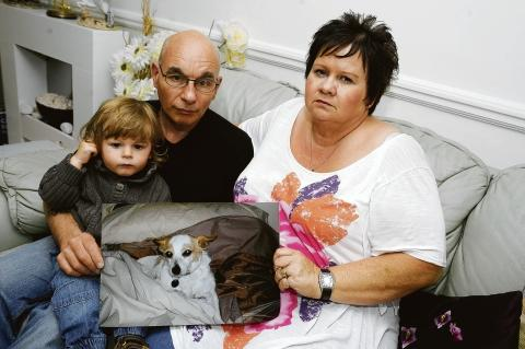 In shock – Jean Cribb, husband Barry and grandson Harrison with a photo of Cherry