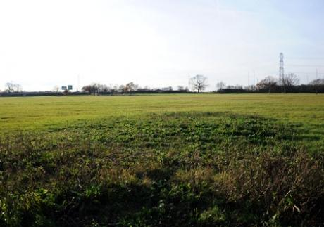 Under threat - Fields between Sadlers Farm and Glebelands in Benfleet