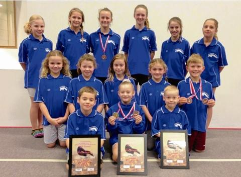 Making a splash — 14 of the 16-strong Southend Diving team which competed at Leeds