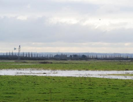 RSPB West Canvey Marsh off Canvey Road