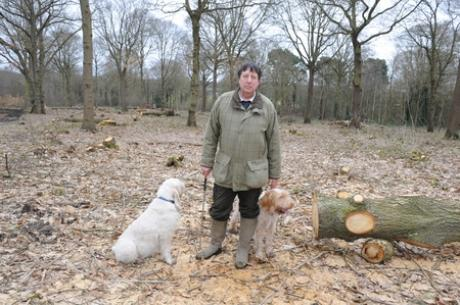 Councillor Norman Ladzrie is campaigning to protect Hadleigh Great Wood
