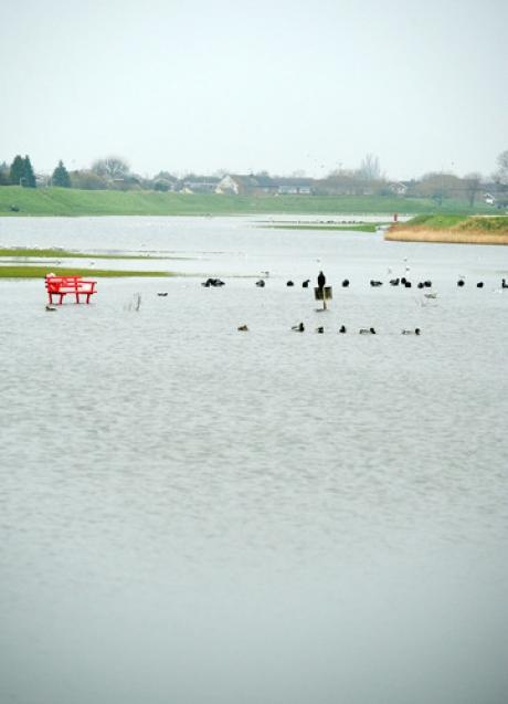 Submerged - Smallgains Recreational Ground before the drainage work