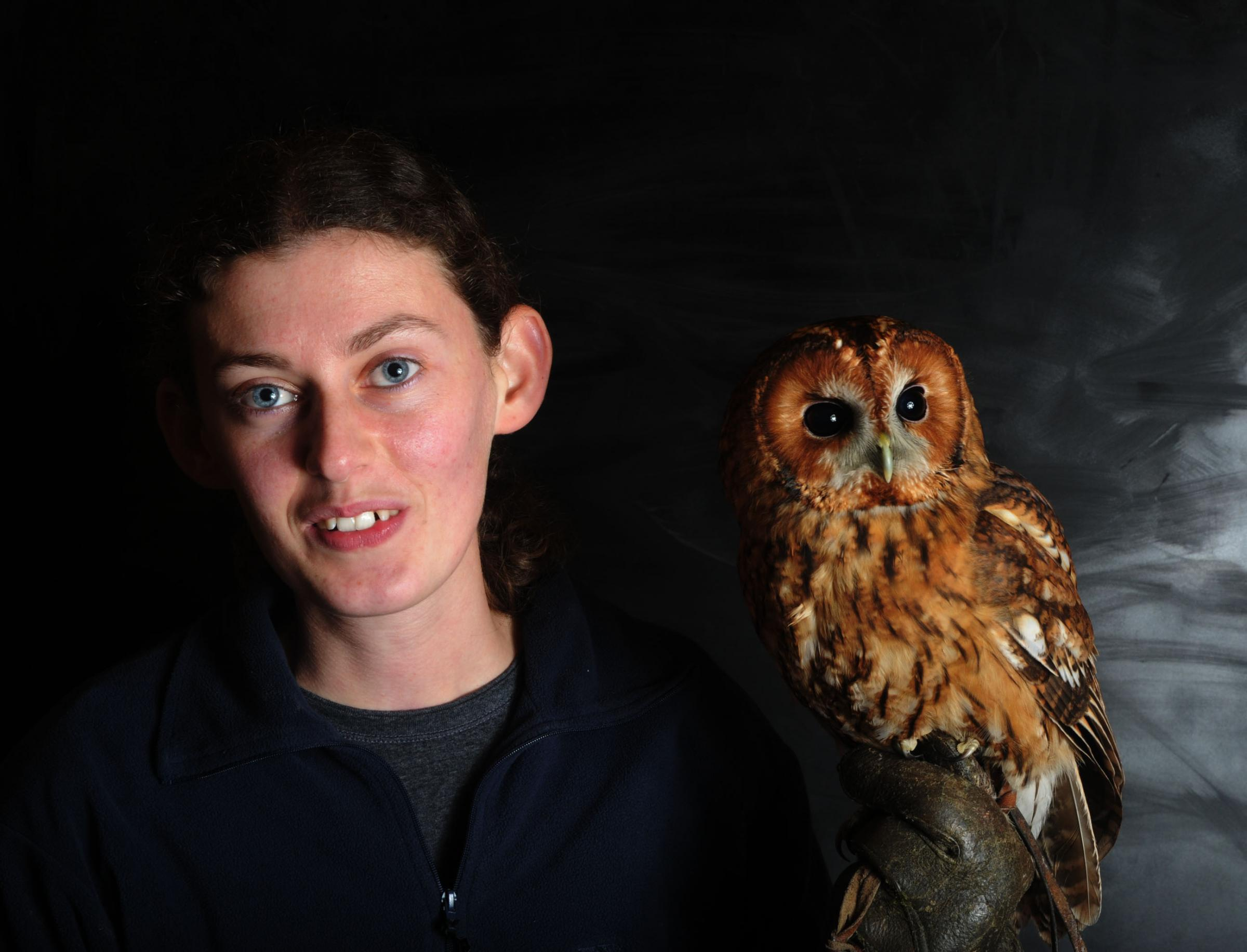Ready to fly – Barleylands volunteer Emma Taylor with tawny owl Mr Forbes