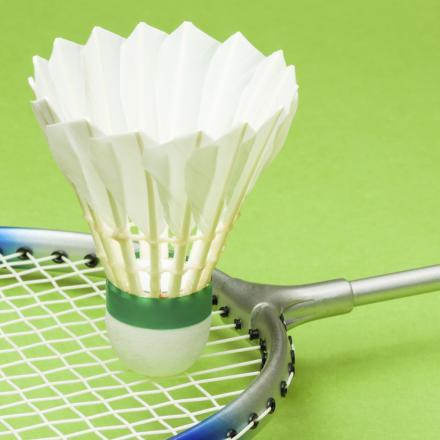 Charlotte takes badminton title at Fitzwimarc tournament