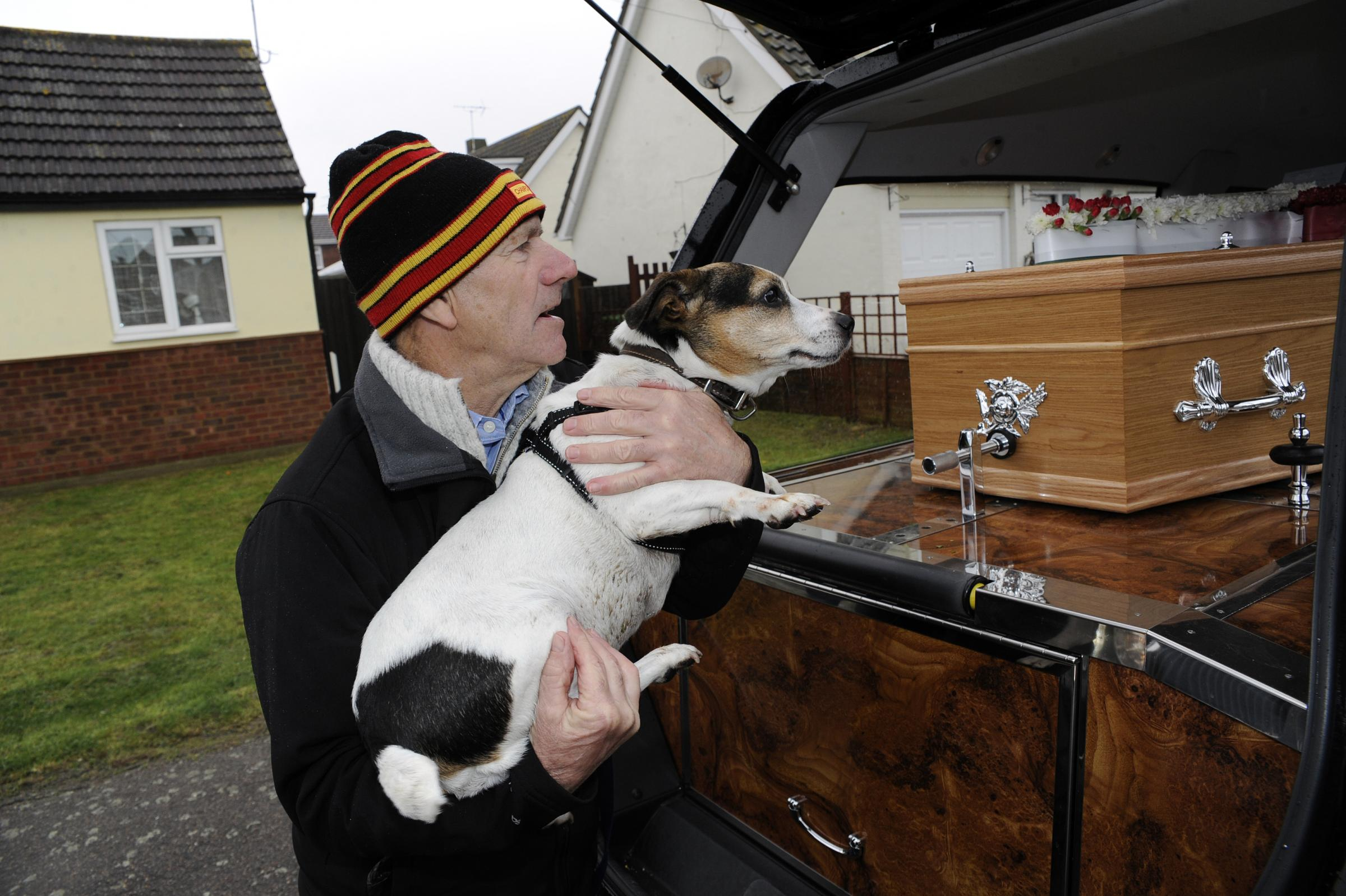 Dog's goodbye to her master - Canvey rock guitarist Dave Higgs