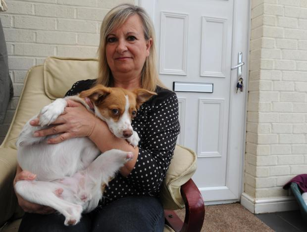 Safe now – new owner Maxine Priest with Boby, who nearly died after part of her back legs were hacked off in Romania