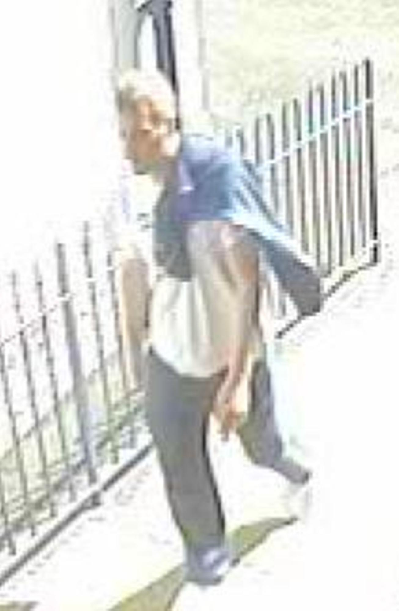 CCTV issued after theft at primary school