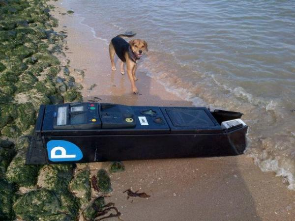 Stolen parking meter dumped on the beach