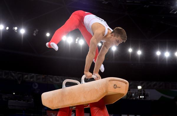 Max Whitlock won a silver on the pommel horse
