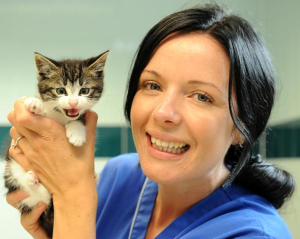 Safe – veterinary nurse Rachel Scott with the sole surviving kitten, a boy which is about eight weeks old