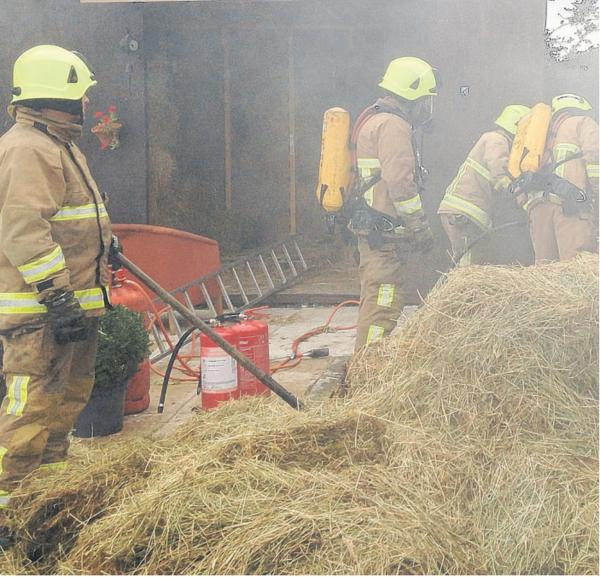 'Don't be stupid... leave fires to us!', firefighters' message to man injured tackling blaze
