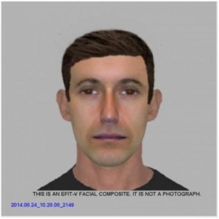 Police release Efit of car thief