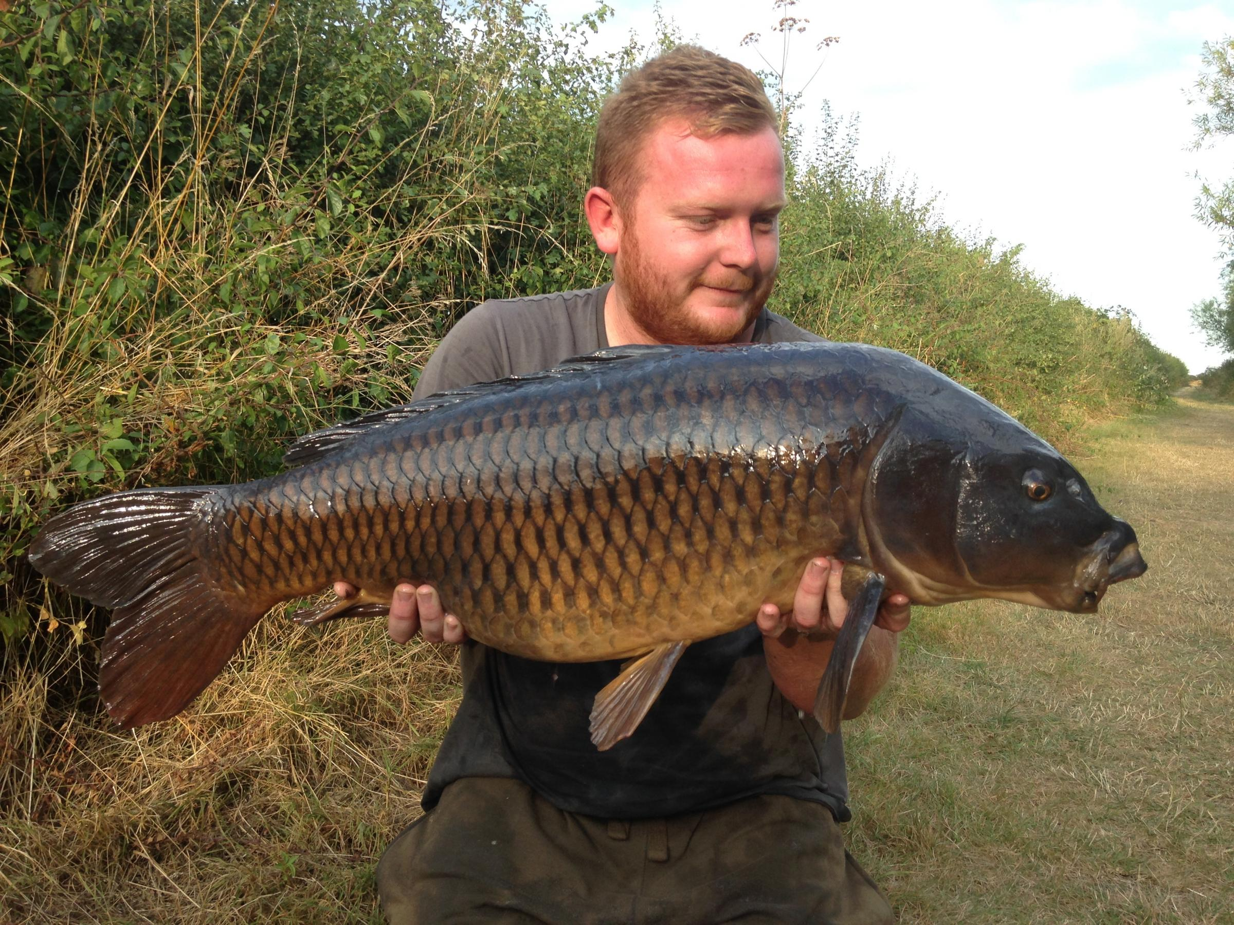 Big boy - Charlie Ridpath shows off this majestic common