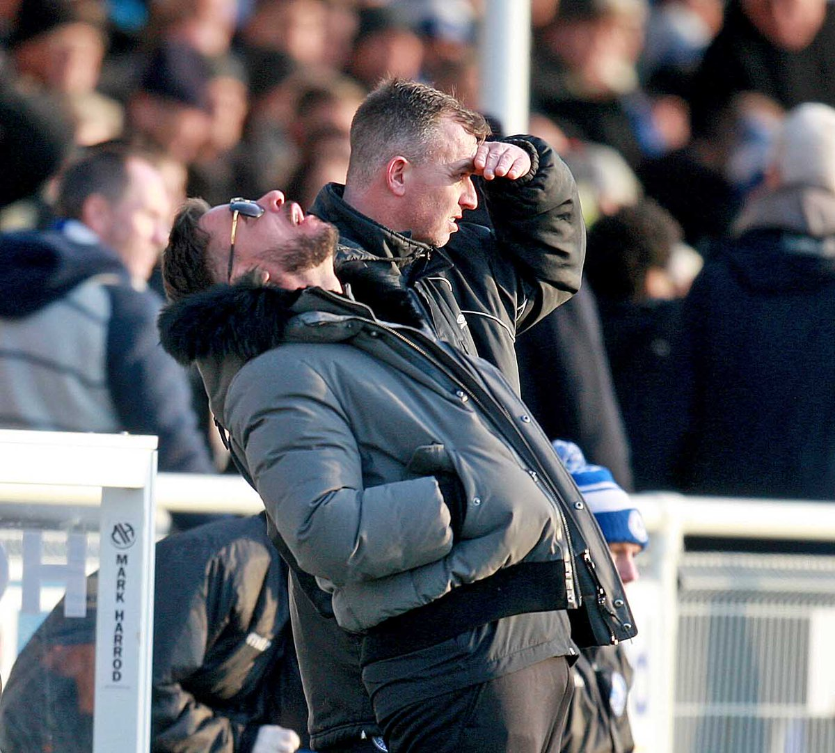 More frustration - Billericay boss Glenn Tamplin Picture: NICKY HAYES