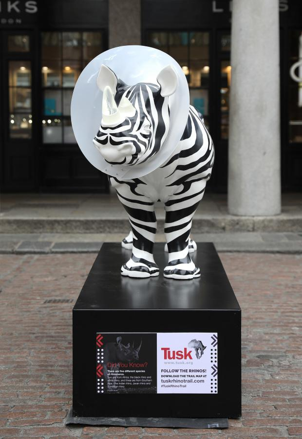 Echo: Undated Handout Photo of a rhino sculpture designed by Mauro Perucchetti. See PA Feature TOPICAL Travel Rhino Trail. Picture credit should read: PA Photo/Tim Whitby/Getty. WARNING: This picture must only be used to accompany PA Feature TOPICAL Travel Rhin