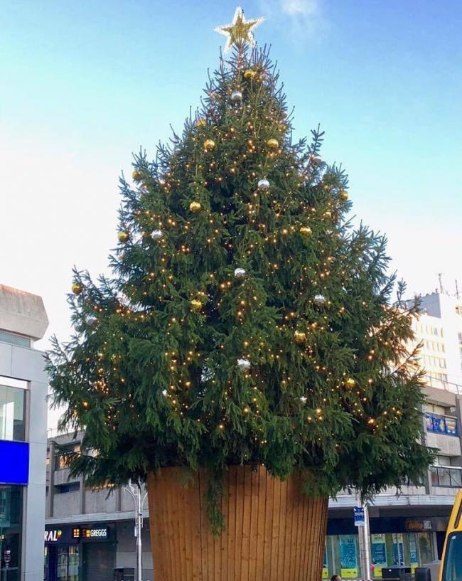southends christmas tree credit southend bid - When Does The Christmas Tree Go Up