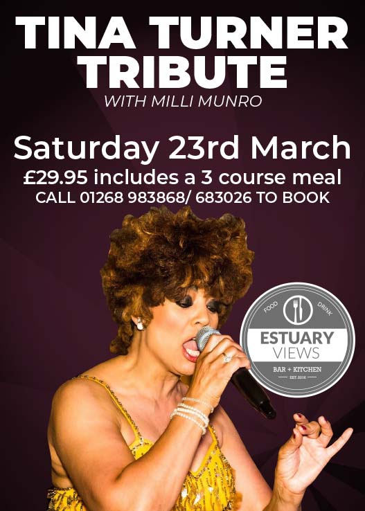 Tina Turner Tribute Night