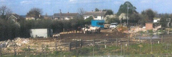 Concerns - these horses are positioned by Sadlers Farm roundabout